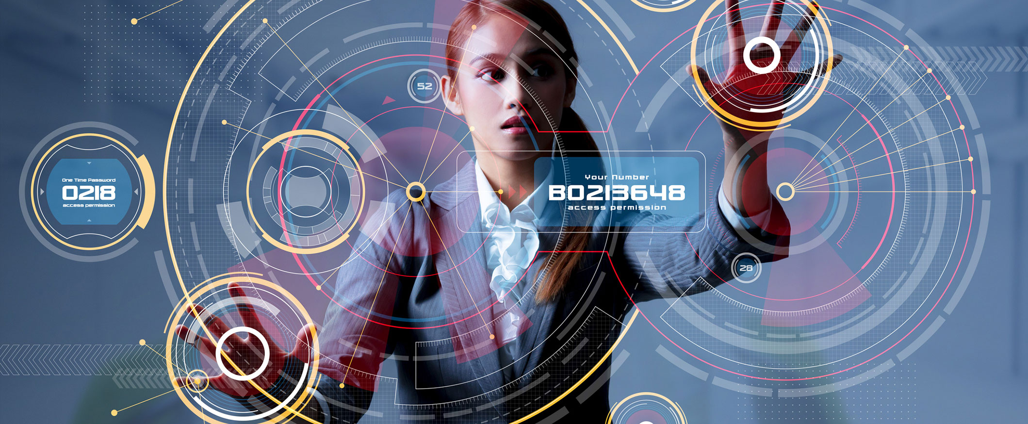 Young Lady Using Graphics User Interface